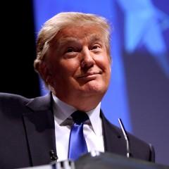 Trump's Anti-Immigrant Rhetoric Fuels Citizenship Push in Miami | Miami New Times