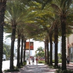 Celebrate Valentine's Day on Miami Beach with deals, offers and discounts